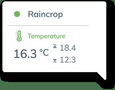 bulle-raincrop