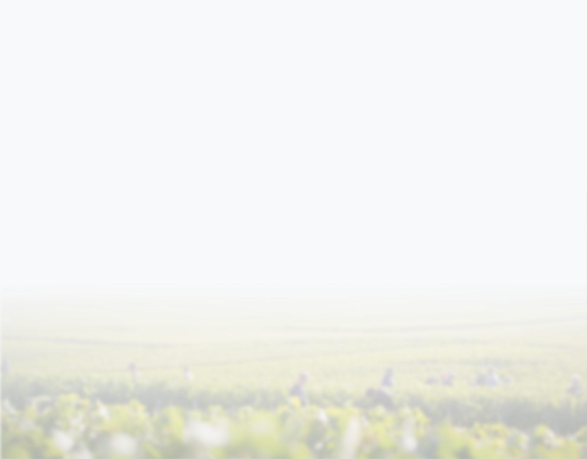 bg-sencrop-blur